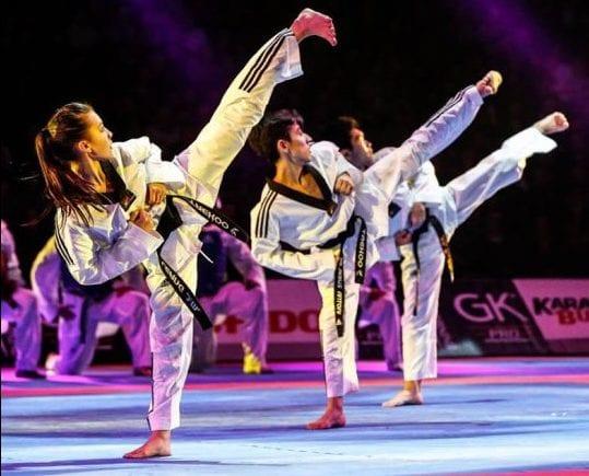 Karate festival des arts martiaux